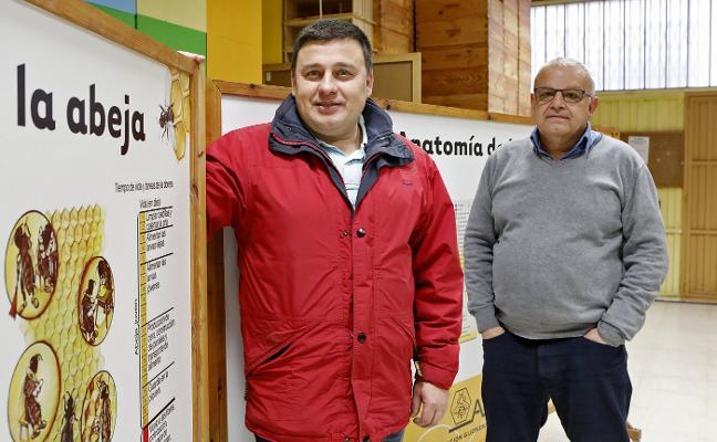 Los apicultores rechazan el uso exclusivo por la IGP del término Miel de Asturias