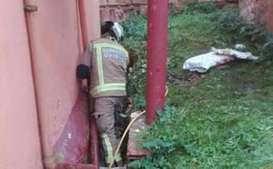 Rescatan un hombre que cayó en una zanja mientras trabajaba junto a su casa en Oviedo