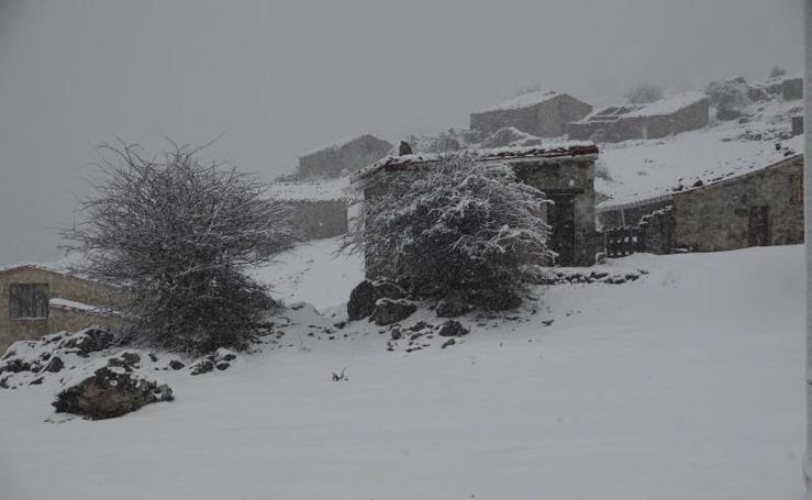 La nieve tiñe de blanco Asturias