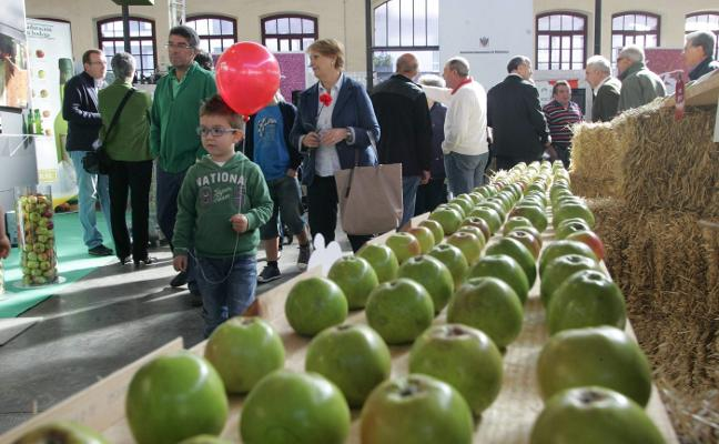 El Festival de la Manzana aspira a ser Fiesta de Interés Turístico Nacional