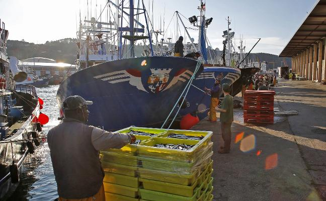 La rula ingresó un millón menos el pasado año al caer el pescado subastado en 344.000 kilos