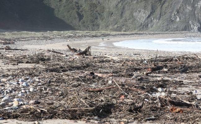 Toneladas de madera y restos de basura cubren casi al completo el playón de Bayas