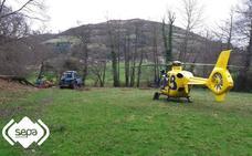Un vecino de Sariego, evacuado en helicóptero al caerle encima un árbol