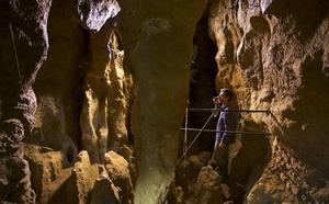 Un estudio en El Sidrón explica la extinción de los neandertales