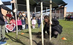 Un abedul recordará siempre al pequeño Thiago en el colegio Atalía de Gijón