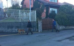 Marley y Athor, los perros clave en los casos de Diana Quer y Gabriel Cruz, intervienen en la investigación del crimen de Ardines