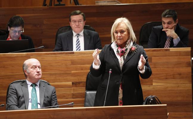 Mercedes Fernández considera que sería tener «miopía política» rechazar la coalición con Foro