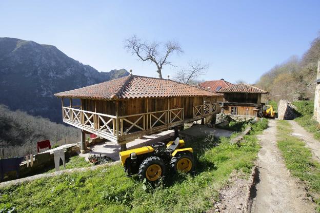 La panera levantada por los nuevos pobladores, con vistas a la Peña Verde. / FOTOS: NEL ACEBAL