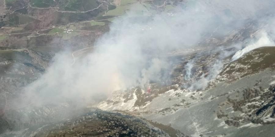 Decenas de incendios queman los bosques asturianos