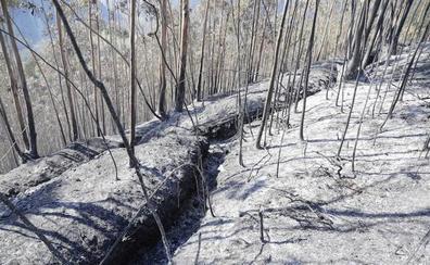 Incendios en Asturias: El fuego arrasa la vegetación y deja al descubierto antiguas trincheras de la Guerra Civil