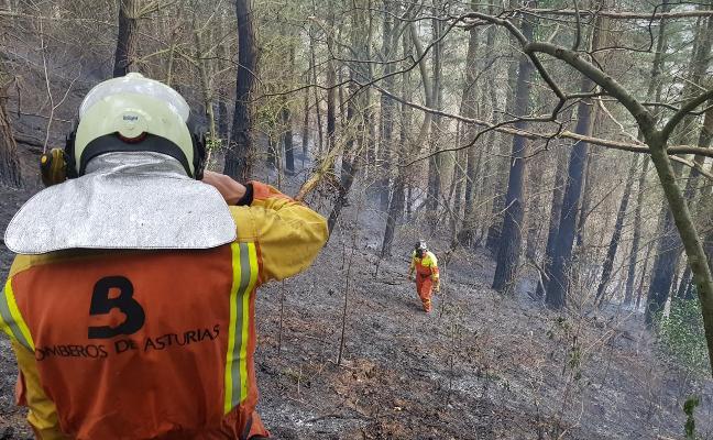 La ola de incendios de este mes en Asturias quemó más terreno que todos los fuegos del año pasado