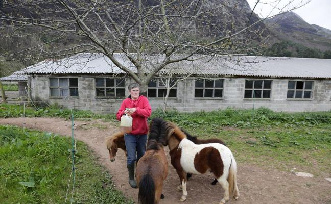 Incendios en Asturias: «Llegué a pensar que perdía a los animales»