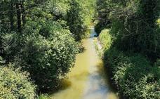 El Ayuntamiento de Gijón, condenado a pagar 4.600 euros por vertidos al río Pinzales