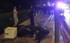 Detenido un conductor que cuadriplicaba la tasa de alcohol tras arrollar a un motorista