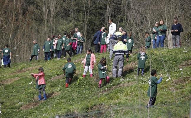 Los alumnos de Riaño plantan 45 árboles en la cementera de la localidad