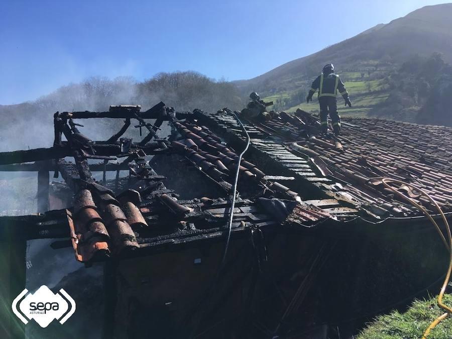 Las imágenes del incendio que calcinó un pajar en Quirós