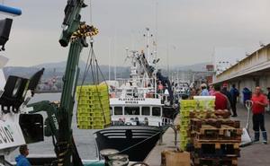 La lonja cierra el peor febrero de su historia con 657.261 kilos subastados