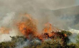 El ganadero de Tineo juzgado como incendiario afirma que el fuego le perjudicó