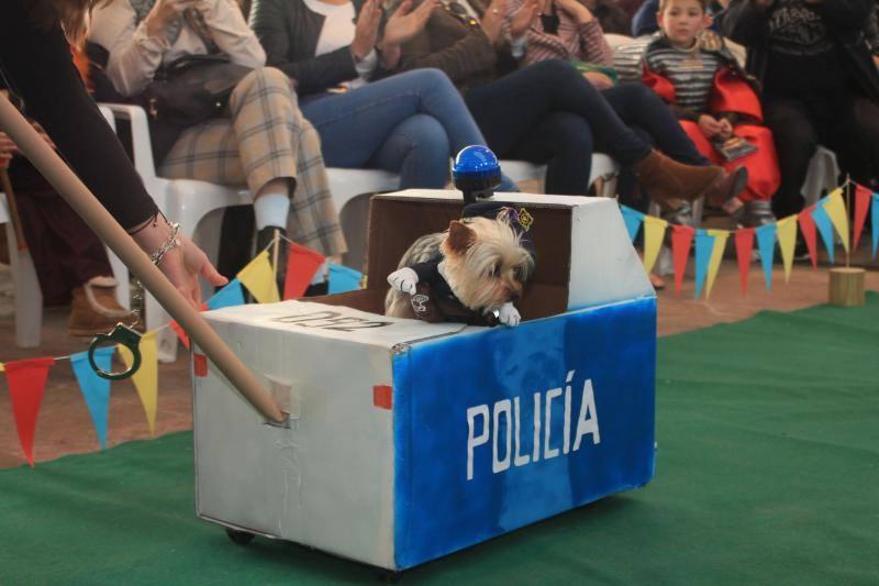 Las mascotas, protagonistas en el carnaval de Cangas de Onís