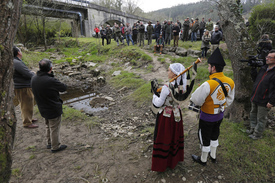 Quinzanas celebra el regreso del salmón a los ríos de Asturias