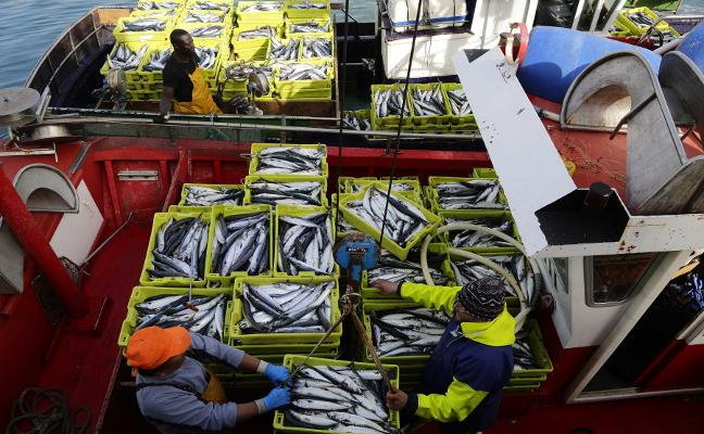 El ministerio sanciona a buques asturianos por sobrepescar cuatro toneladas de xarda