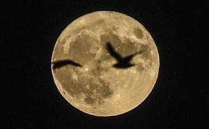 La superluna de marzo que no volverás a ver hasta 2030