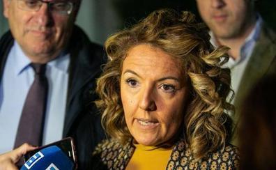 Mallada: «La auditoría a Hunosa se hizo cuando se rumoreó que podía ser candidata»