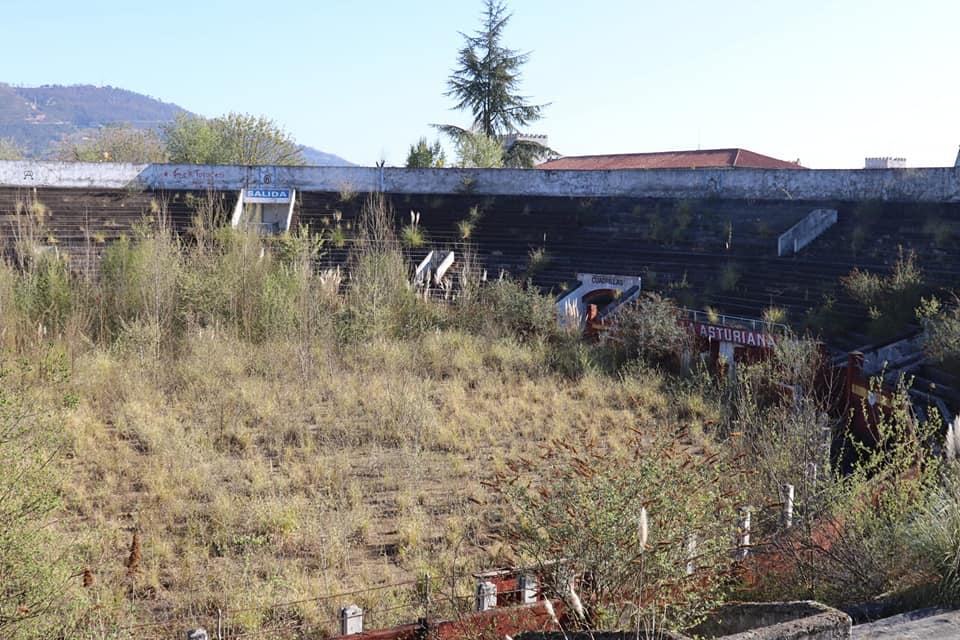 La plaza de toros de Oviedo, invadida por la maleza
