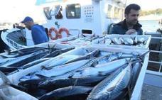 Los pescadores repartirán xarda en protesta por la cuota