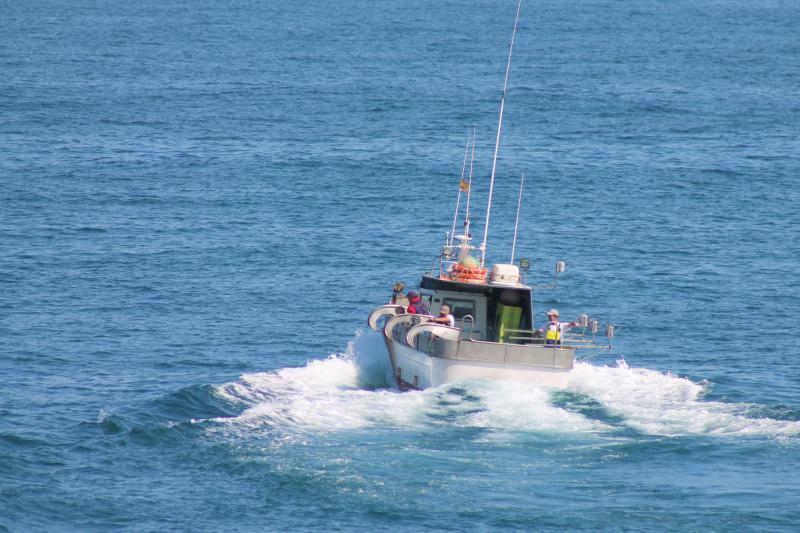 Pescadores del Cantábrico, en guerra por la xarda