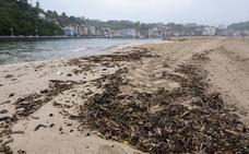 La limpieza de las playas de Los Quebrantos y Santa Marina comenzará mañana