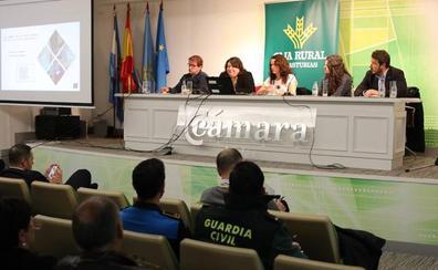 El sector turístico de la comarca encuentra oportunidades de negocio en el Camino de Santiago