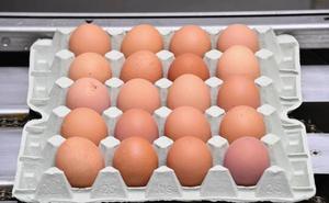Los huevos, ¿los dejamos dentro o fuera de la nevera?