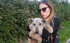 Los perros, doblemente abandonados en Avilés
