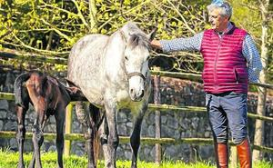 Asturias, cuna de caballos campeones