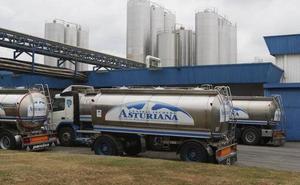 Central Lechera Asturiana, entre las empresas españolas con mejor reputación