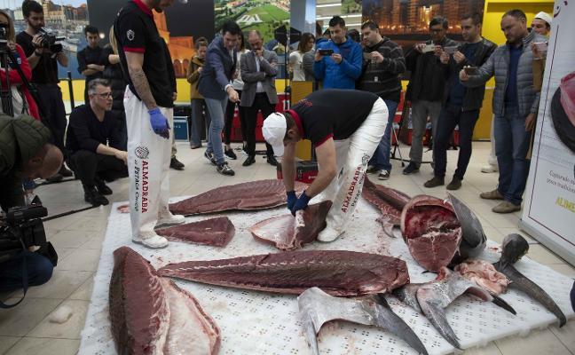Así se trocea un atún de más de 200 kilos en Gijón