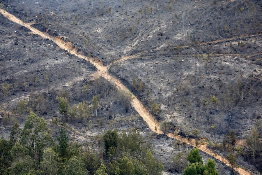 Así quedó la zona arrasada por las llamas en la Sierra de Sollera