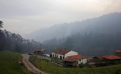 La intensa lluvia finiquita el incendio de Sierra de Sollera