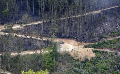 Fotos: así quedó la zona arrasada por las llamas en la Sierra de Sollera