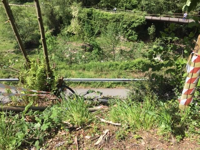 Fallece un ciclista en la Senda del Oso en Proaza
