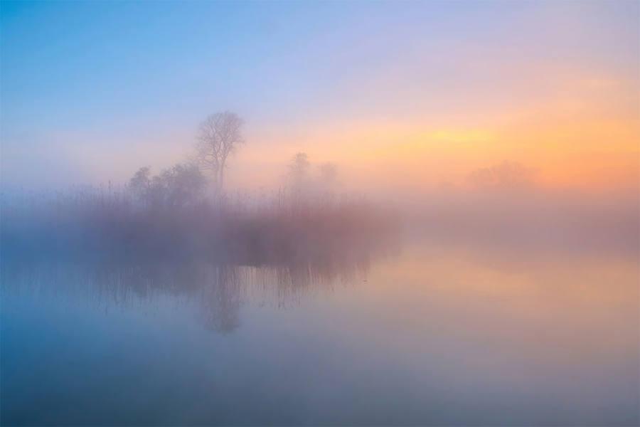 Fotografías de Naturaleza de premio