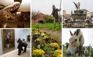 Puertas abiertas en los museos de Asturias