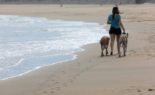 «No vamos a mirar para otro lado si la gente se salta las normas en la playa»