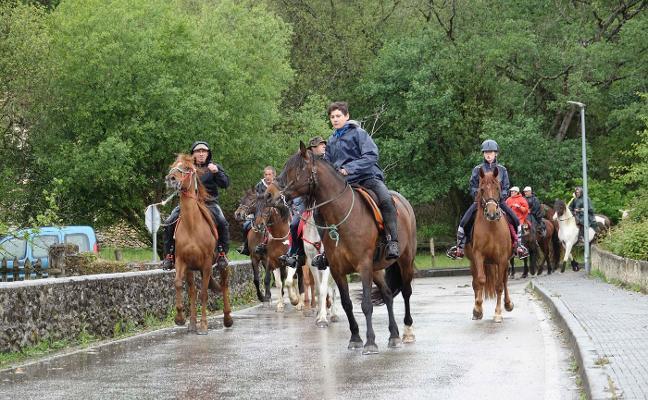 Los caballos deleitan en Ribadedeva