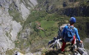 Los increíbles pasos de los pastores por los Picos