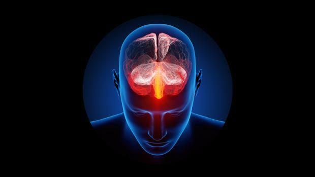 Nuestro cerebro sabe que estamos muertos minutos después de fallecer