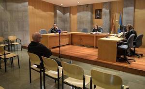 Condenado a cuatro meses de prisión por apalear a su gato en Tineo