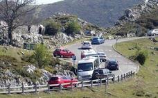 Arrancan las restricciones al tráfico en los Lagos de Covadonga