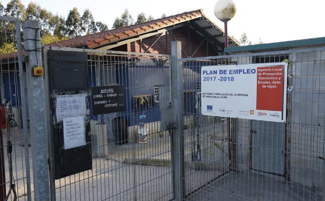 Herida una niña al ser atacada por un pitbull en una vivienda de Gijón